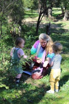 a and e wattle play 2